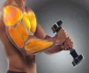 Как работает вибро-гантель Shake Weight