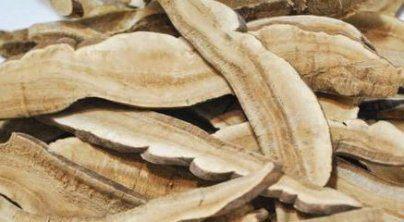 Ганодерма или гриб Рейши для похудения