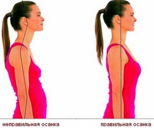 Как использовать корректор осанки Magnetic Posture Support