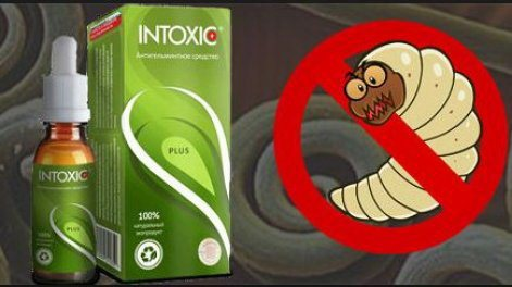 Действие антигельминтного препарата Intoxic Plus