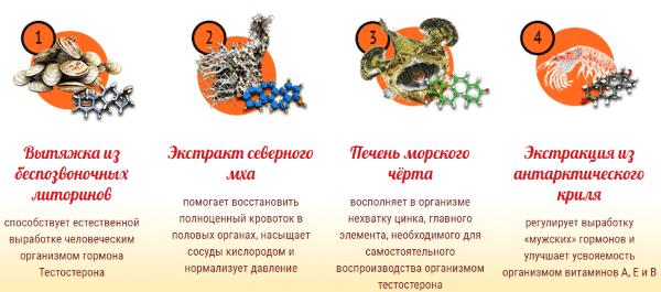 капли молот тора состав россия