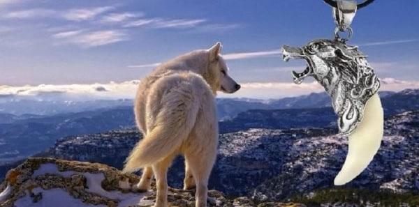 Мой обзор на Волчий клык