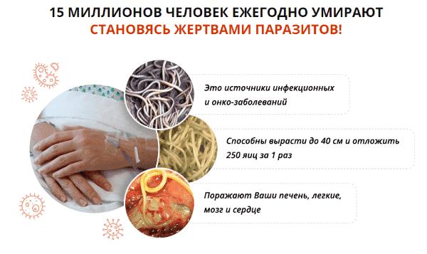 Состав капель Stop parazit