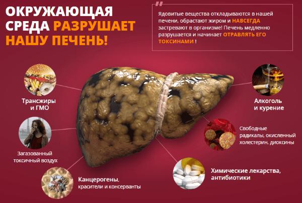 Препарат Stabilin и поврежденная печень