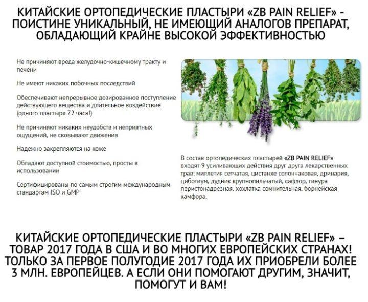 Уникальность составляющих компонентов пластыря ZB Pain Relief
