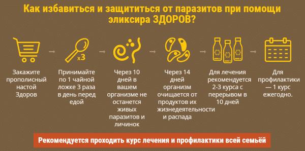 Правила применения эликсира от паразитов «Здоров»