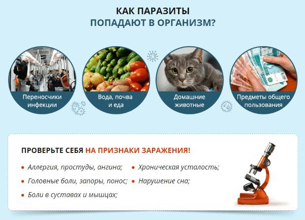 Отзывы о препарате от паразитов Stop parazit