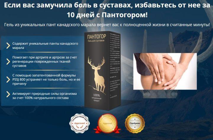 Гель для лечения суставов Пантогор