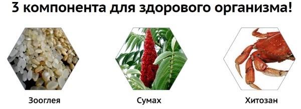 Состав препарата «Зеротокс»