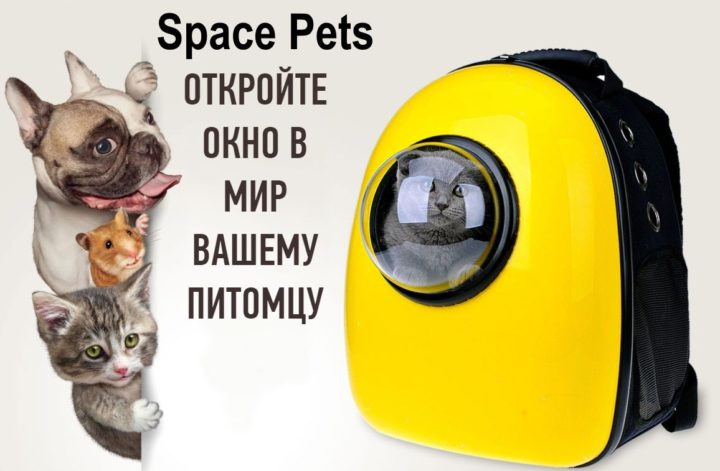 Space Pets - рюкзак для животных: купить, цена, обзор, отзывы