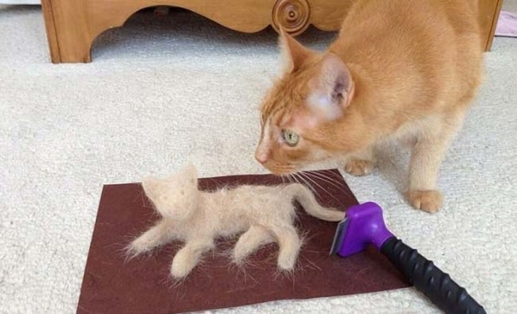 Мой обзор на фурминатор для шерсти кошек и собак