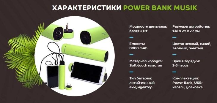 Технические характеристики устройства PowerBank Musik