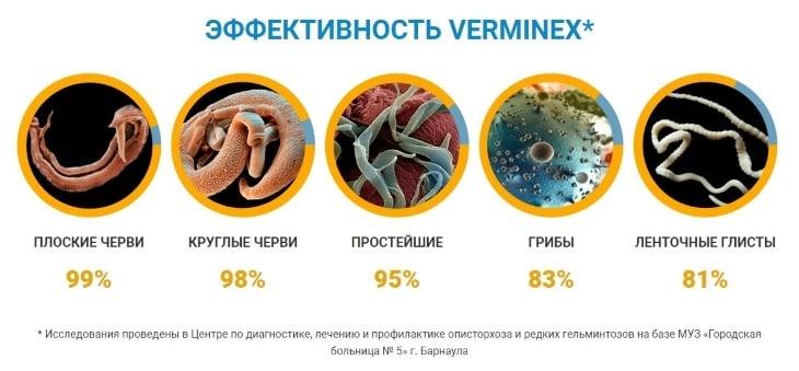 Эффективность и результаты от применения Verminex