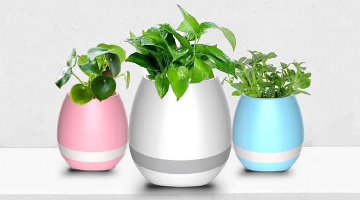 Smart Music Flowerpot - музыкальный цветочный горшок