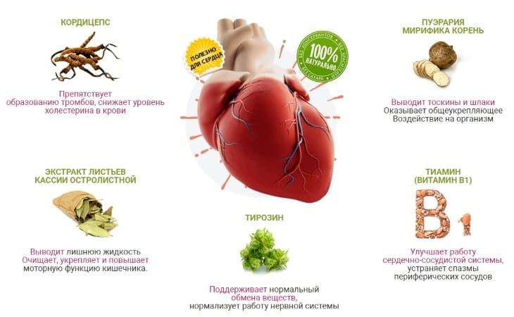 Что входит в состав средства PhytoLife