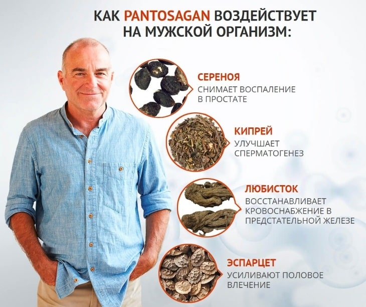Что входит в состав Pantosagan