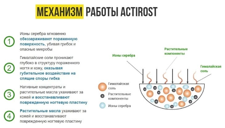 Механизм работы ActiRost
