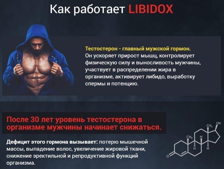 Как работает Либидокс