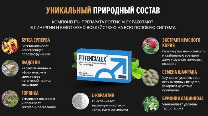 Уникальный природный состав капсул Potencialex