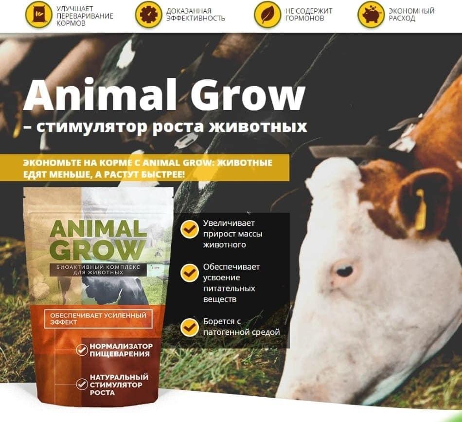 Стимулятор роста животных Animal Grow: купить, цена, обзор, отзывы