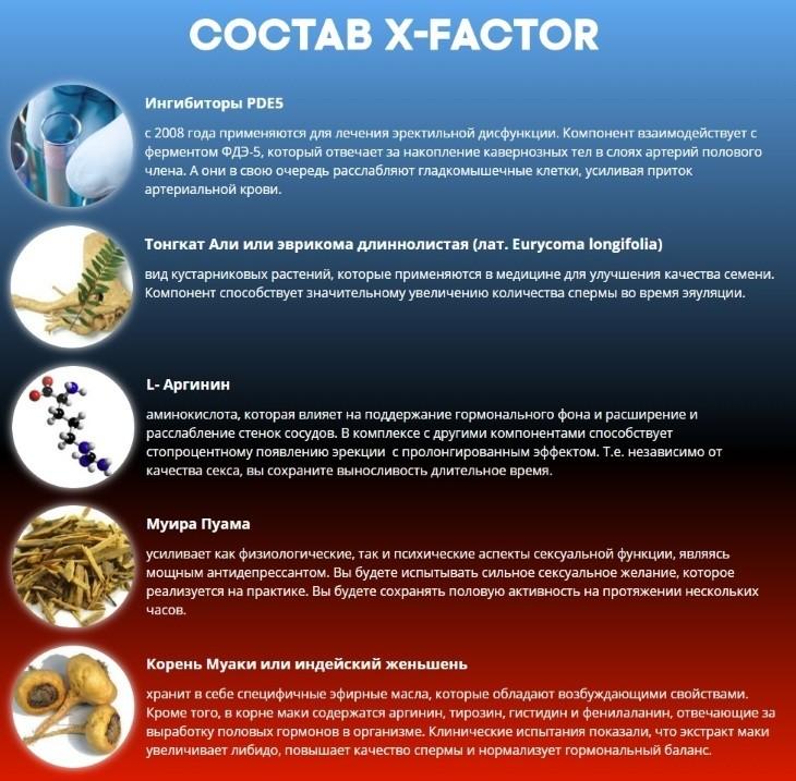 Что входит в состав X-Factor