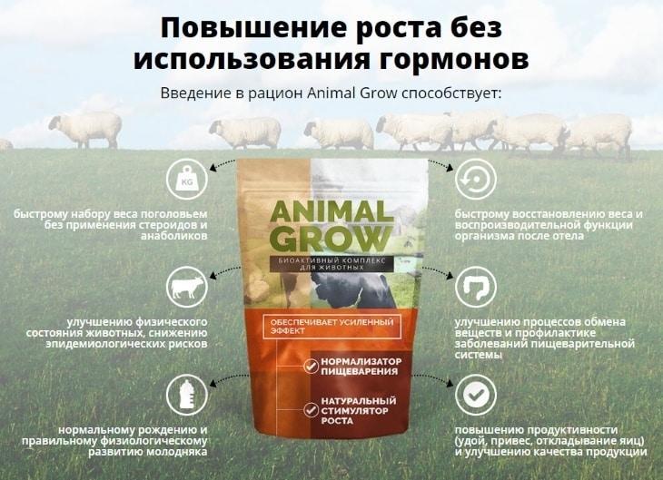 Повышение роста без использования гормонов вместе с Animal Grow