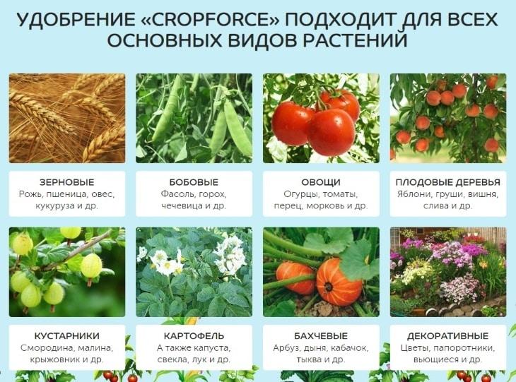Для каких растений можно использовать CropForce