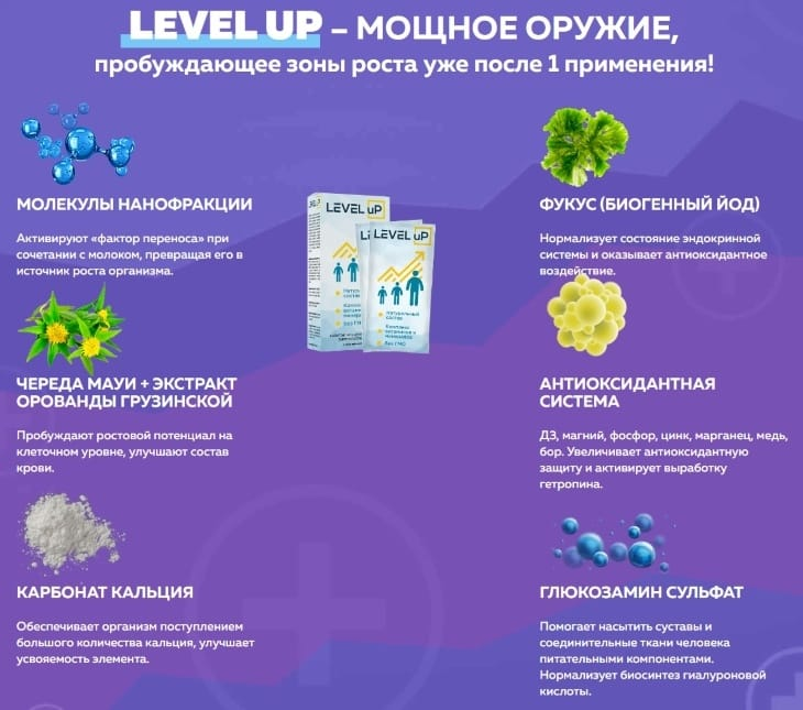 Что входит в состав Level Up