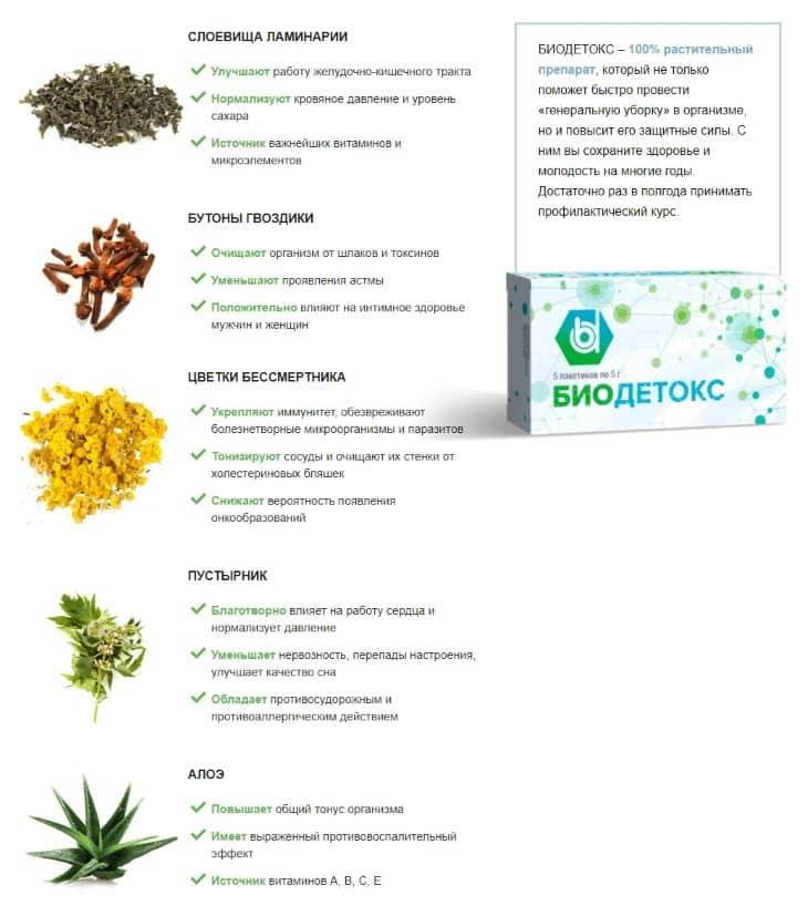 Что входит в состав препарата Биодетокс