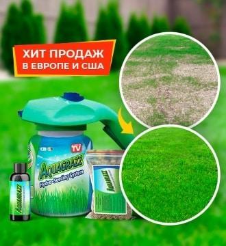 AquaGrazz (АкваГразз) жидкий газон
