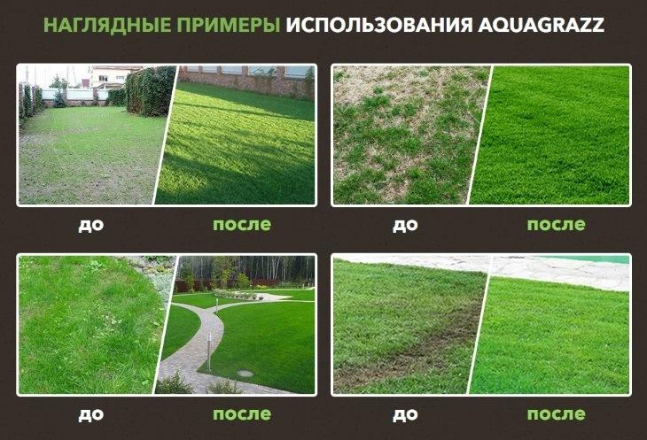 Примеры использования жидкого газона AquaGrazz