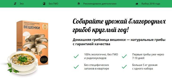 Домашняя грибница вешенки: купить, цена, доставка, отзывы, обзор