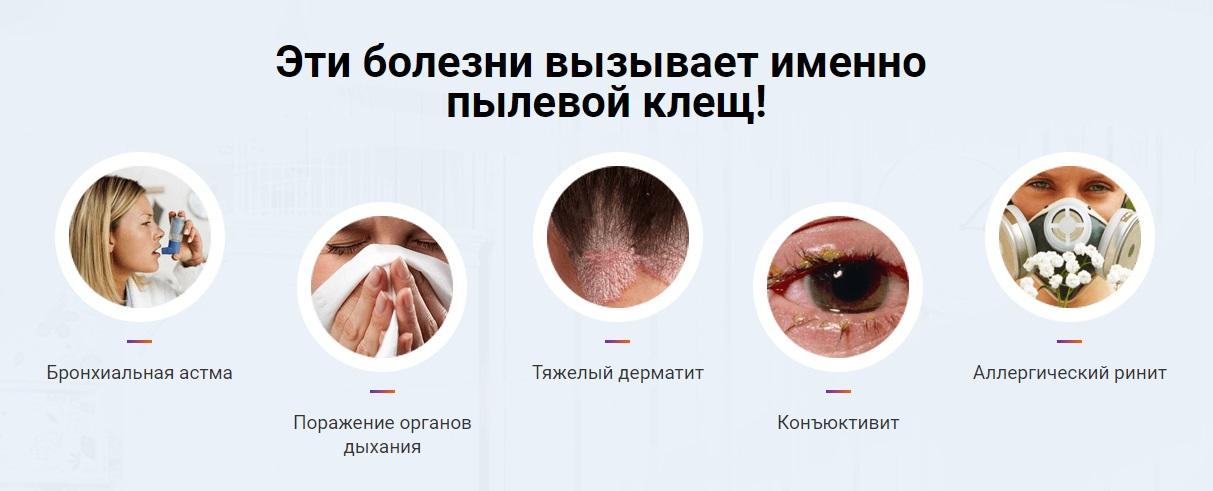 Эти болезни вызывает именно пылевой клещ