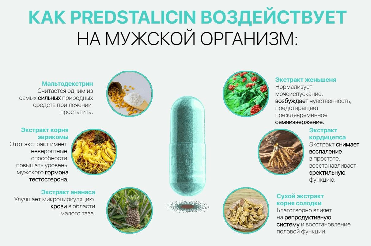 Что входит в состав Predstalicin