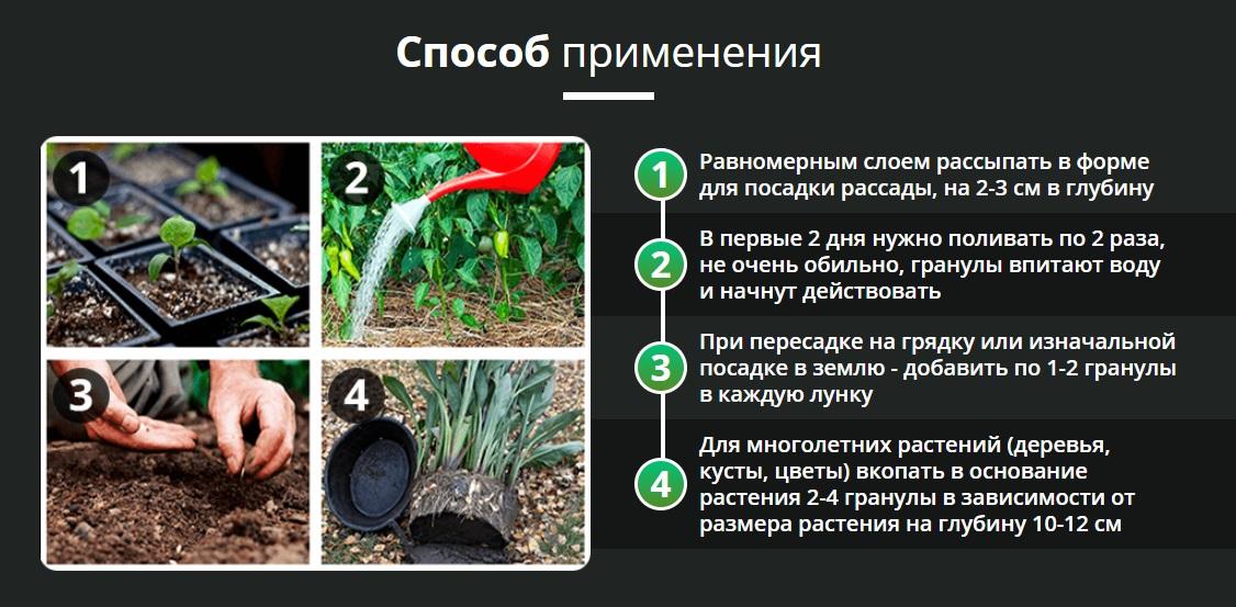 Способ применения AgroPlant